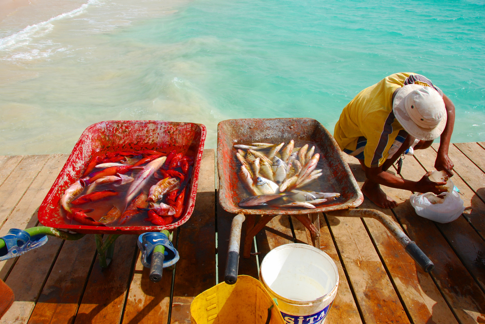 Fresh fish and fisherman in Santa Maria, Sal Island, Cape Verde