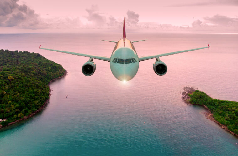 Plane flying over forest and pink sea