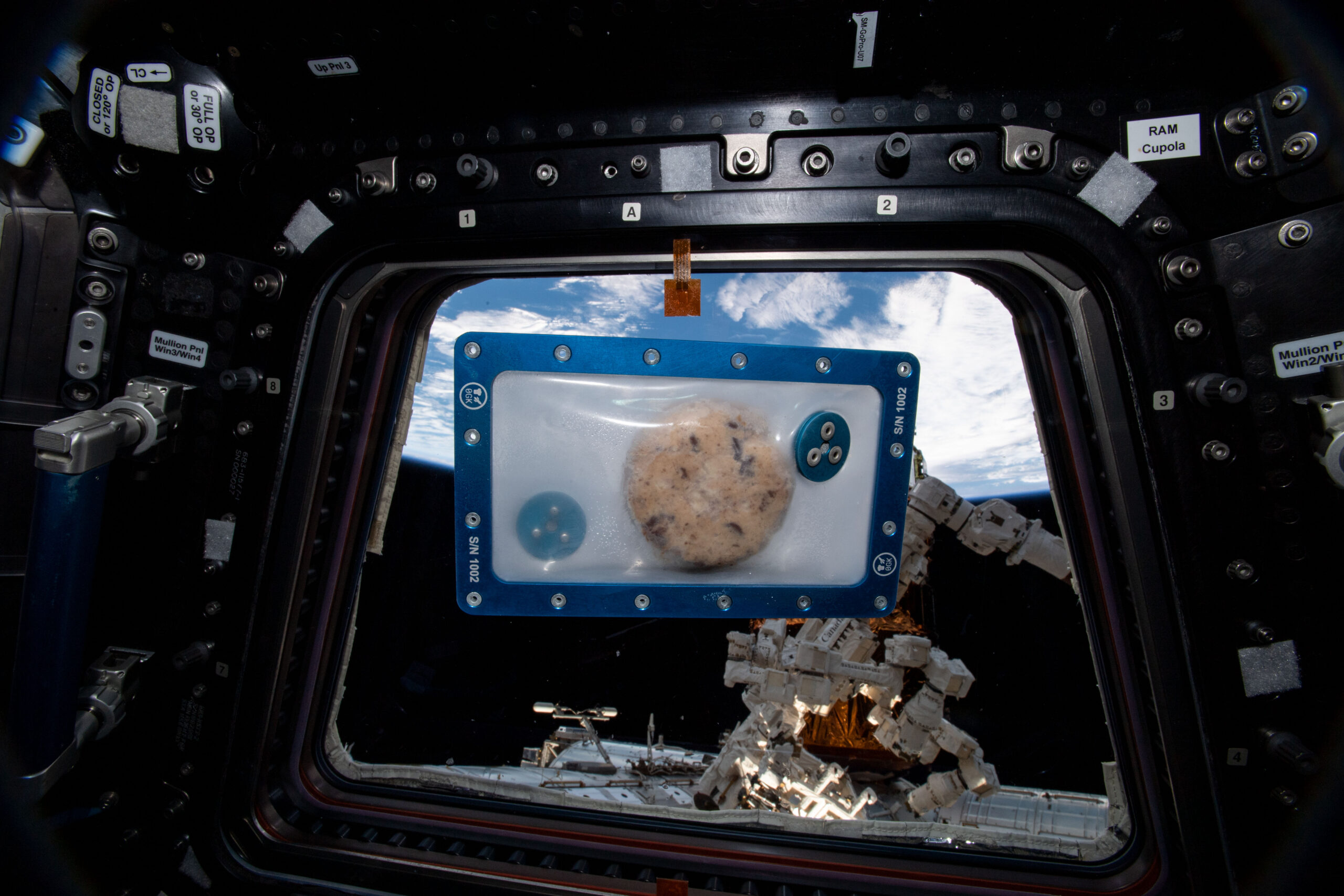 Doubletree hotel cookie baking on ISS