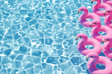Inflatable swans swimming pool