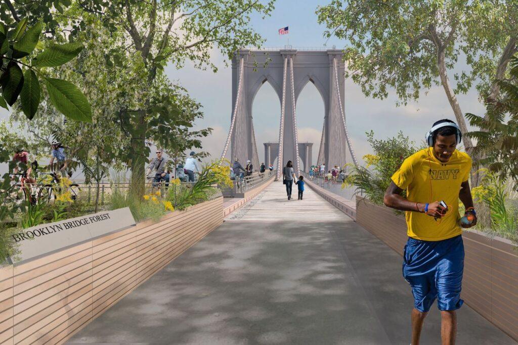 Reimagining Brooklyn Bridge Brooklyn Bridge Forest