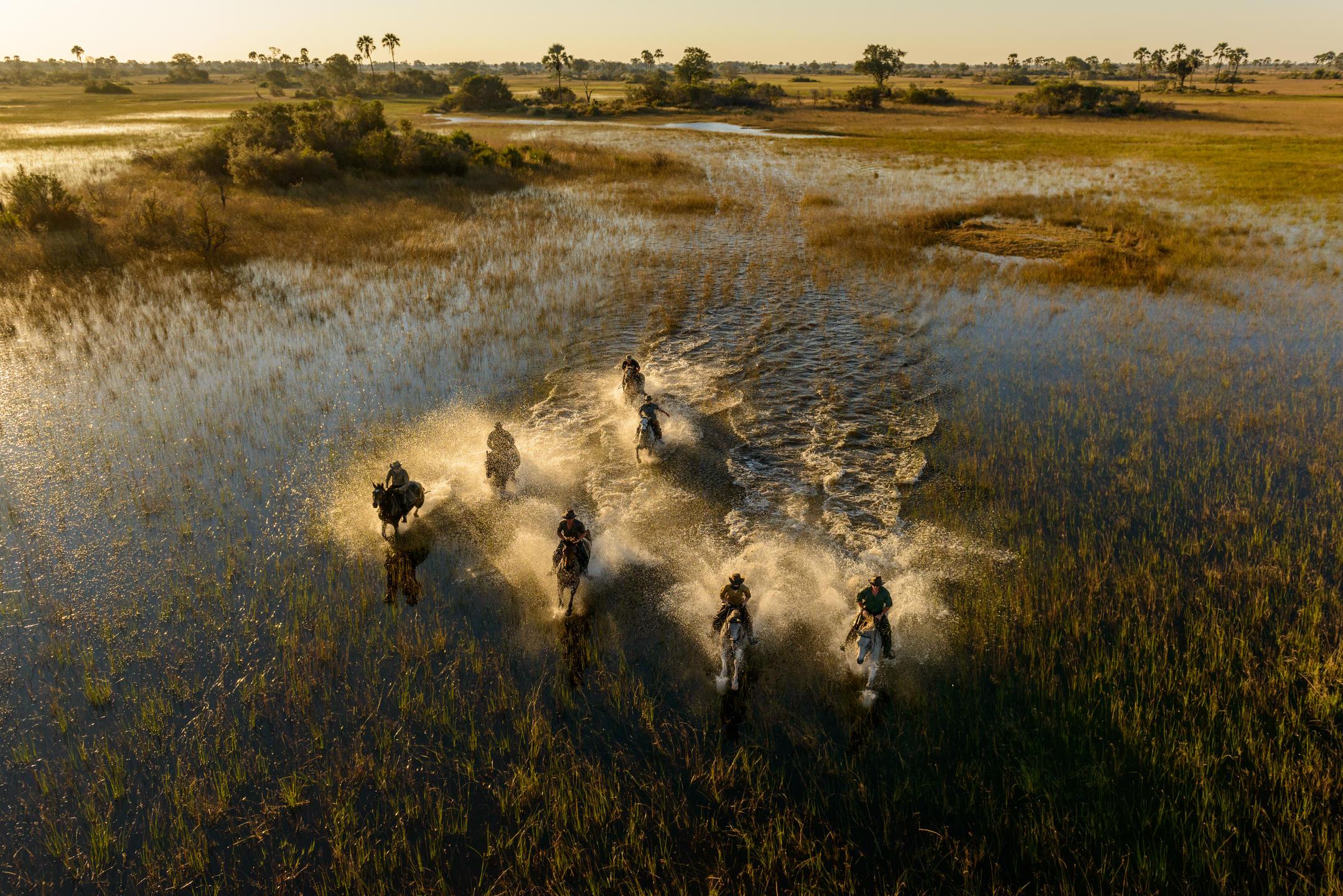 African Horseback Safari Okcavango Delta