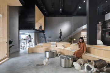Meow Restaurant E Studio credit Chao Zhang