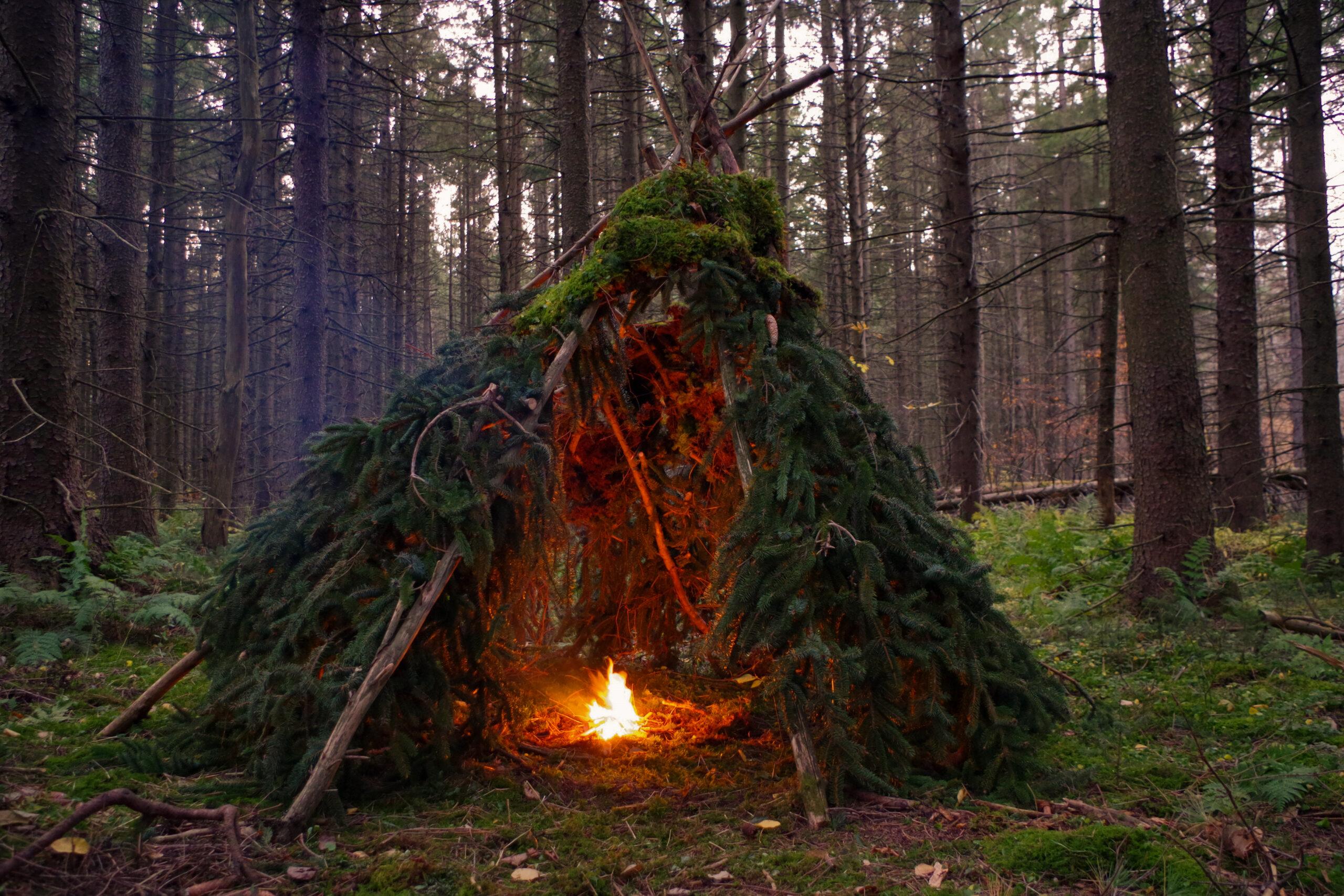 Primitive Wikiup Bushcraft Survival shelter