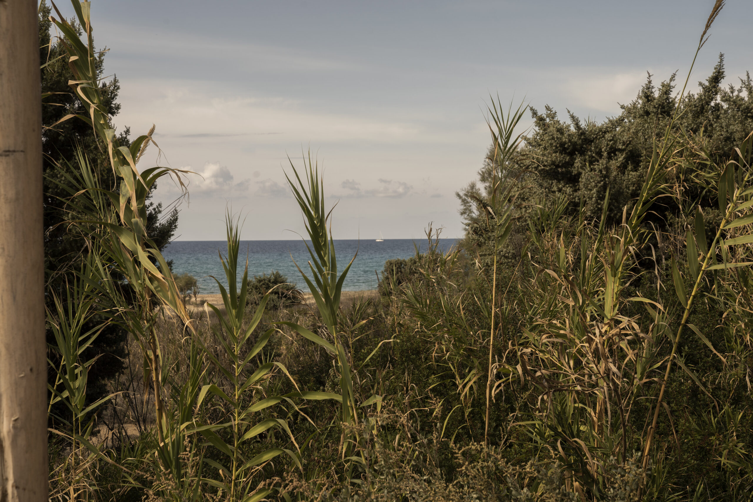beach view from The Rooster ©Nick Nikolaou