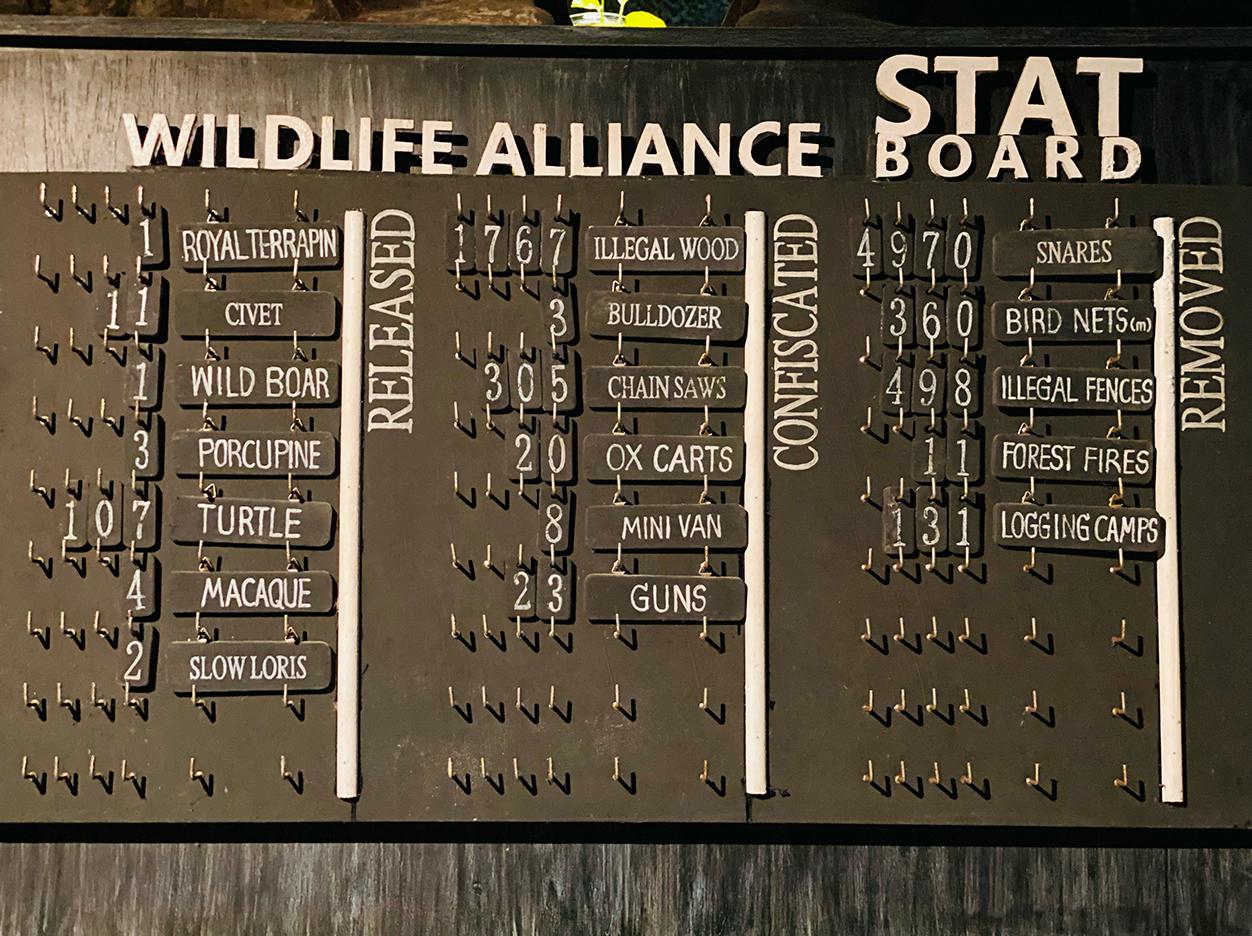 Wildlife Alliance stats