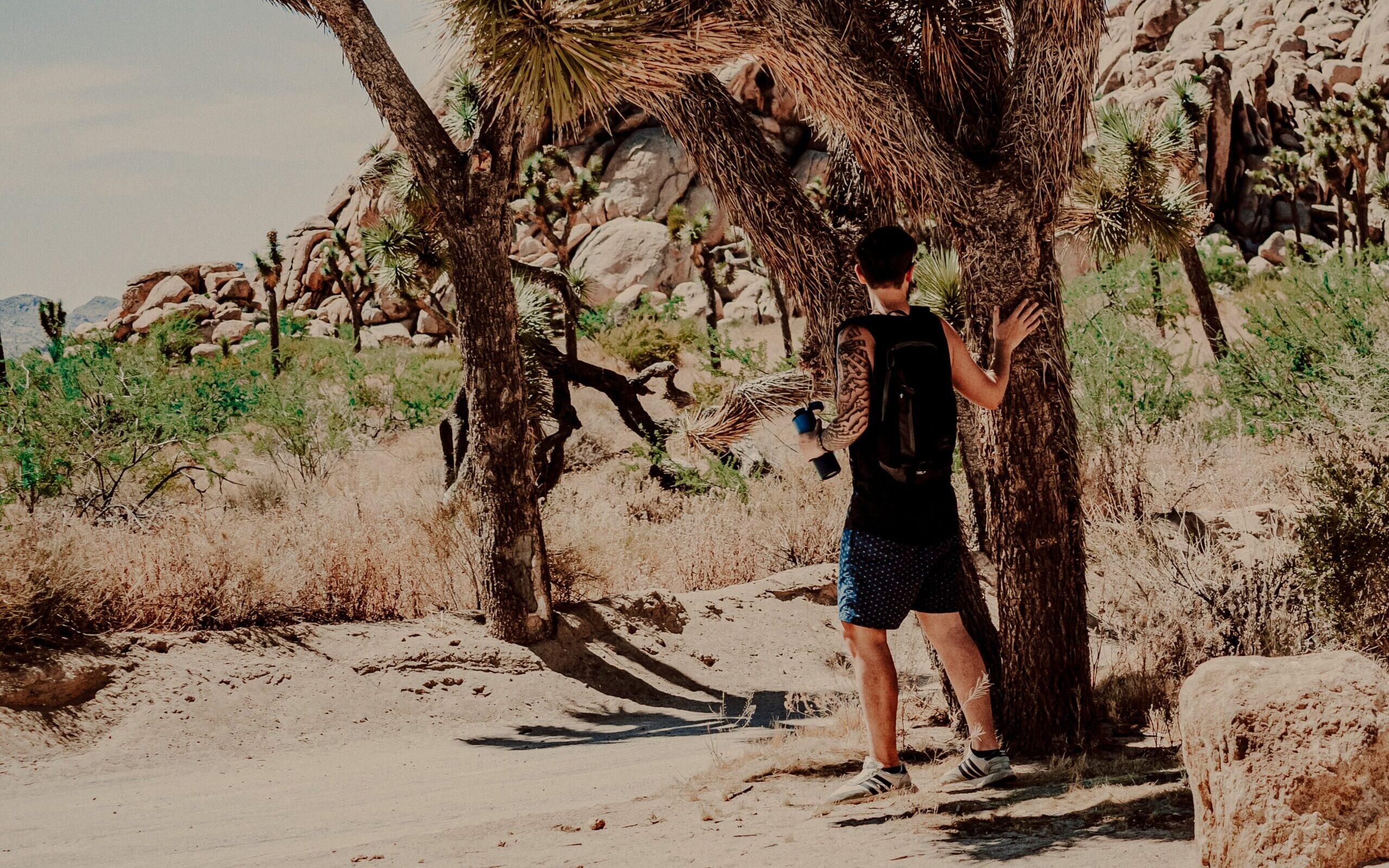 Traveller in desert
